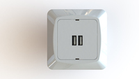 USB LADDUTTAG 2-V 3,4A 5V